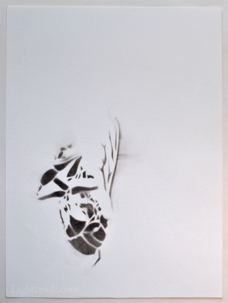Pieces - Smoke on Paper - 24x32cm - 2015