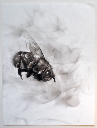 Disintegrate - Smoke on Paper - 24x32cm - 2015
