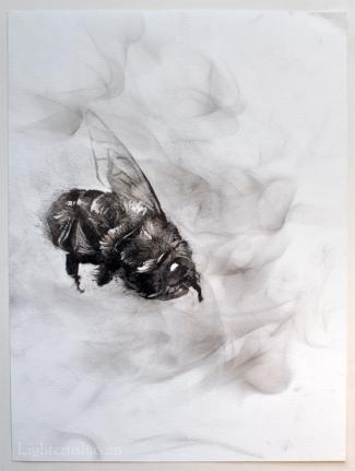 Disintegrate - Smoke on Paper - 24x32cm - 2015
