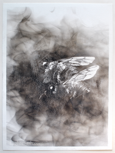 Pair - Smoke on Paper - 24x32cm - 2015