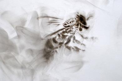Tensions (detail) - Smoke on paper - 56x38cm - 2015